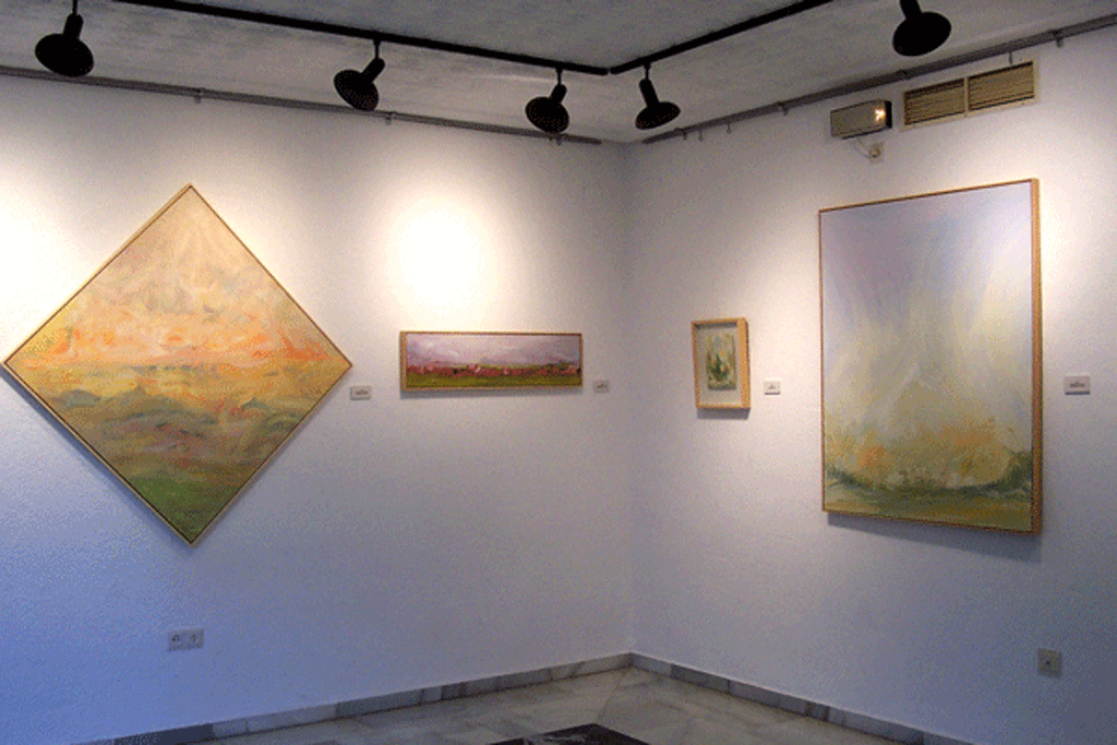 Galerias de la artista Emma Rodriguez Álvarez, ERA